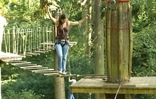 Lake District attraction: Go Ape